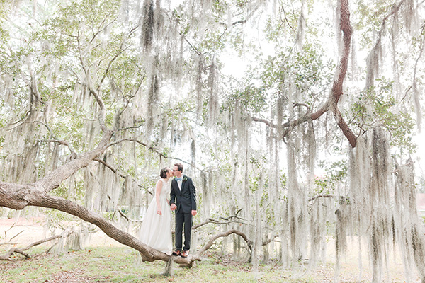 young wedding couple share a sweet kiss while standing on a branch surrounded by graceful live oak tree branches